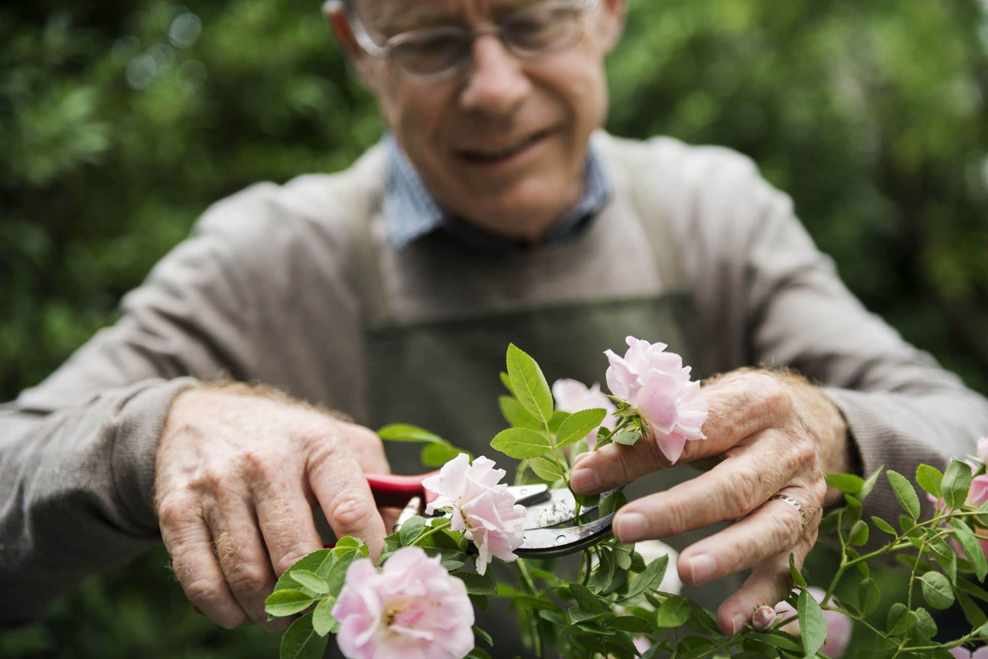 ריפוי בעיסוק כרמיאל - Restart Therapy ריפוי בעיסוק למבוגרים